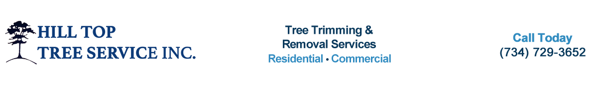 Hill Top Tree Service